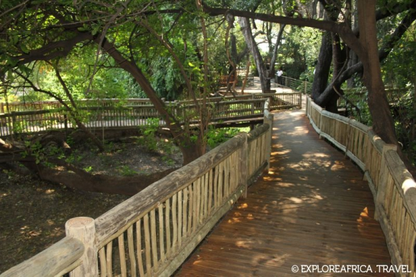 chobe_safari_lodge_walkway-800x533