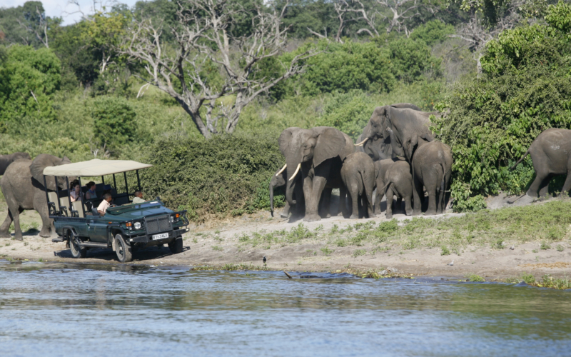 Three Reasons to Add Chobe to Your Bucket List