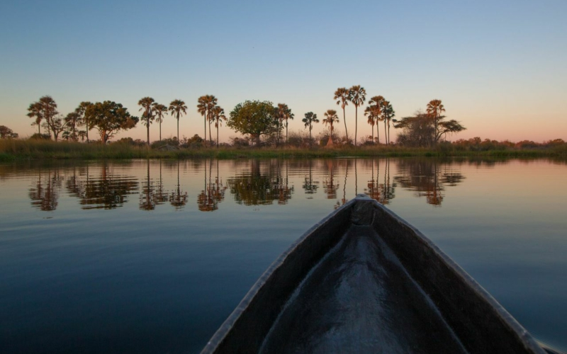 3 Unique Safari Experiences in the Okavango Delta