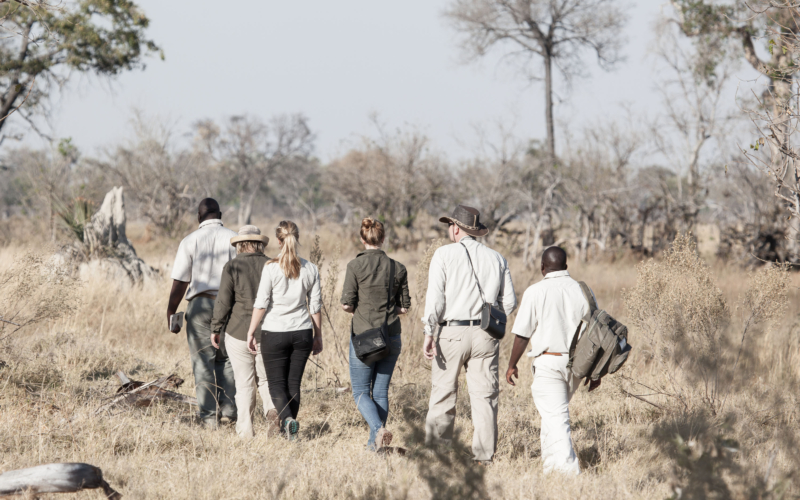 Exploring the Wonders of Botswana on Foot