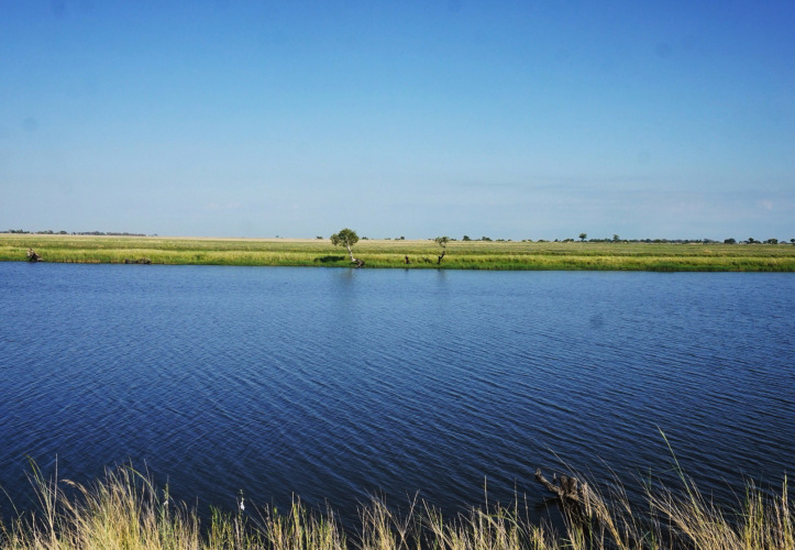 Jaini's African Adventures | Chobe, Botswana