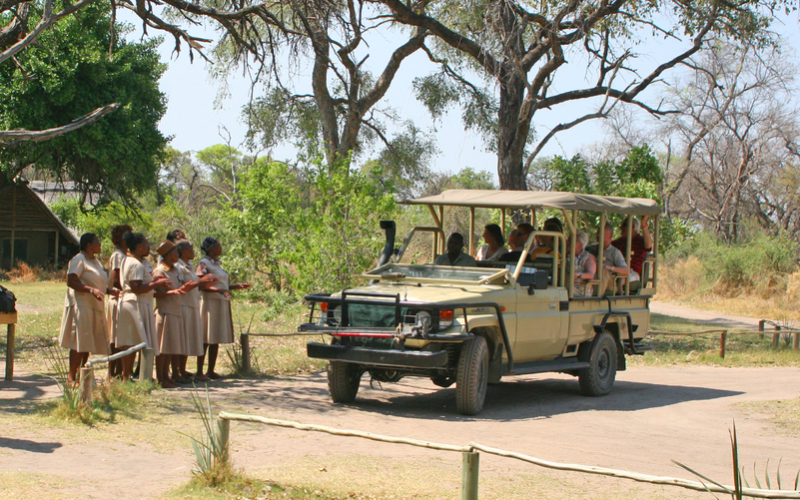 Common Safari Misconceptions Debunked