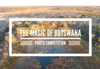 The Magic of Botswana Photo Contest Winners