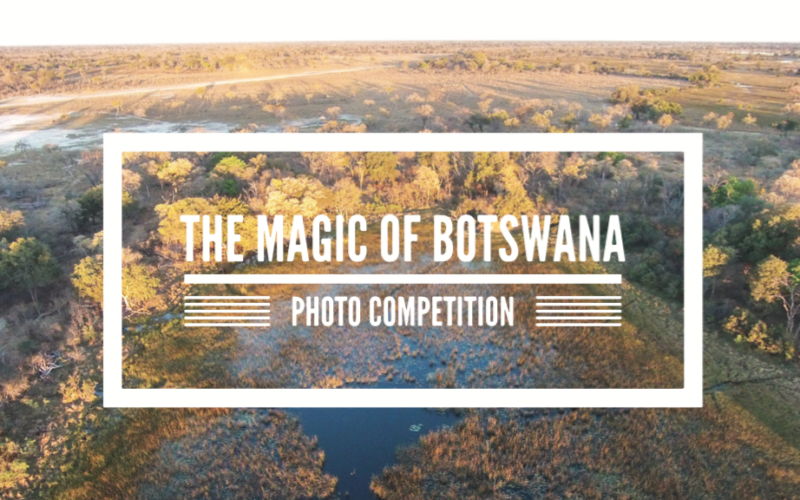 Win a Botswana Safari with Under One Botswana Sky – The Magic of Botswana Photo Contest