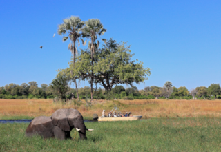 Botswana Photo Mania – The Magic of Botswana Photo Contest