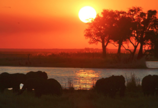 The Best of Botswana – Under One Botswana Sky's Photo Contest