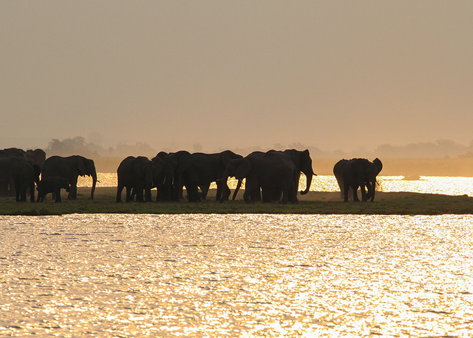 The Magic of Botswana Photo Contest