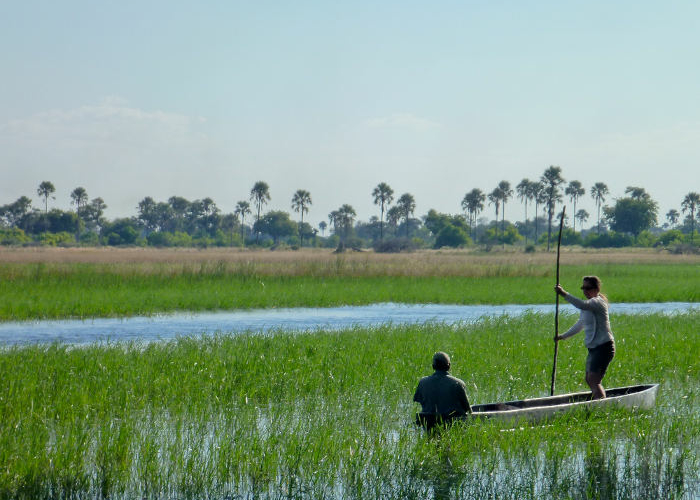 Walking Chief's Island, Okavango Delta, Botswana