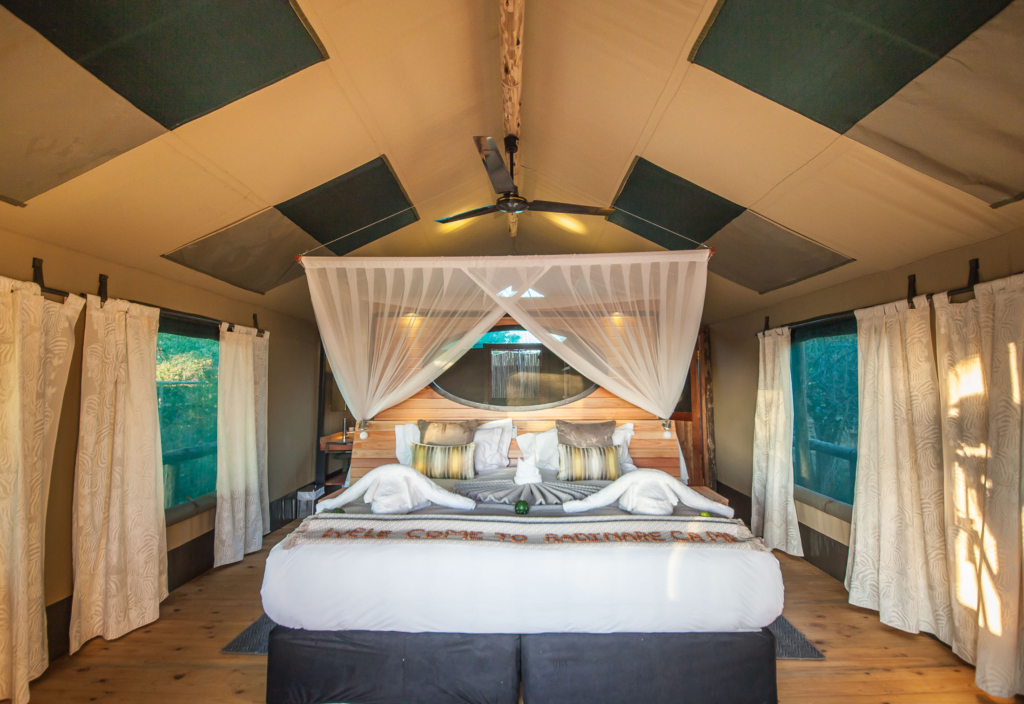 New Rra Dinare camp accomodation