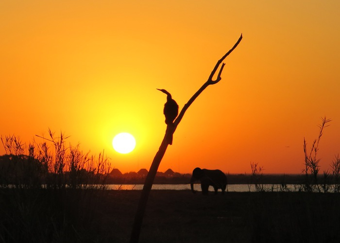 The Magic of Botswana Captured in Photos – Photo Contest