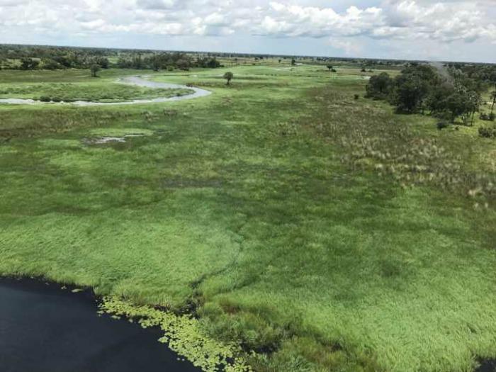 Botswana Okavango safari PomPomCamp 2