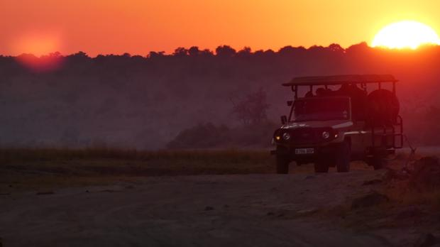 Chobe Bush Lodge safari