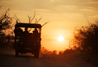 10 Reasons why you need to visit Botswana