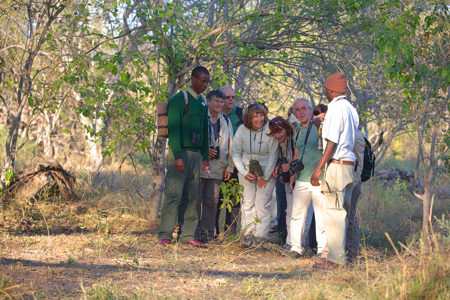 Safari Activities Guided walks(6)