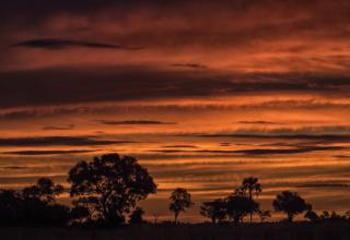 Mesmerising skies in Botswana