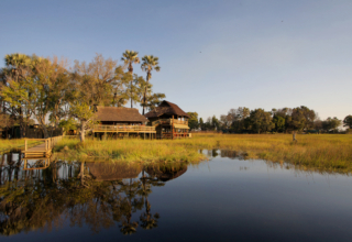 In The Press: How to Arrange A Mokoro Safari in the Okavango Delta