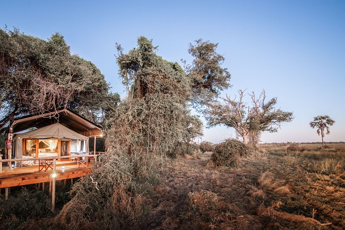 Under One Botswana Sky, Botswana, Okavango Delta, Moremi Crossing, Chief's Island, bush walk