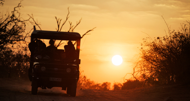 Under One Botswana Sky, Botswana, Botswana safari, Okavango Delta, Chobe Bush Lodge, Chobe Safari Lodge, Gunns Camp, Moremi Crossing, Nata Lodge, Pom Pom Camp, Mma Dinare, Rra Dinare, luxury safari accommodation