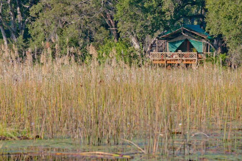 Under One Botswana Sky, Pom Pom Camp, Pom Pom, Okavango Delta, Nxabega Concession, Matsebe Concession, Botswana Safari, Botswana Wildlife, Botswana Safari Camps