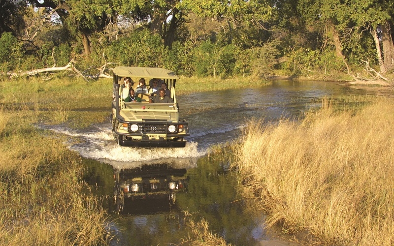 In the Press: How to Take a Safari on a Budget