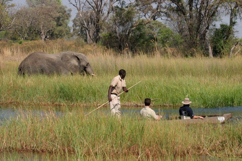 Under One Botswana Sky, Okavango Delta, Gunns Camp, Chiefs Island, Safari Honeymoon, Romantic Breaks