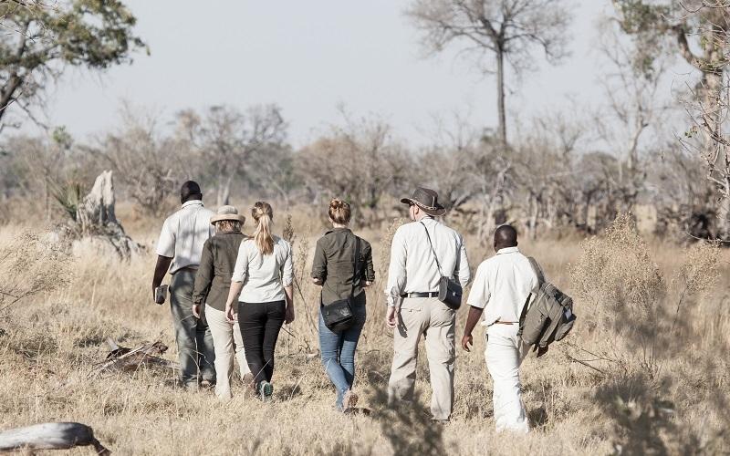 Exploring Botswana's Royal Island