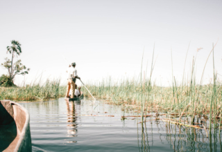 In the Press: Inside a Responsible Safari in the Okavango Delta