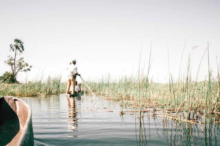In the Press: Inside a Responsible Safari in the Okavango Delta