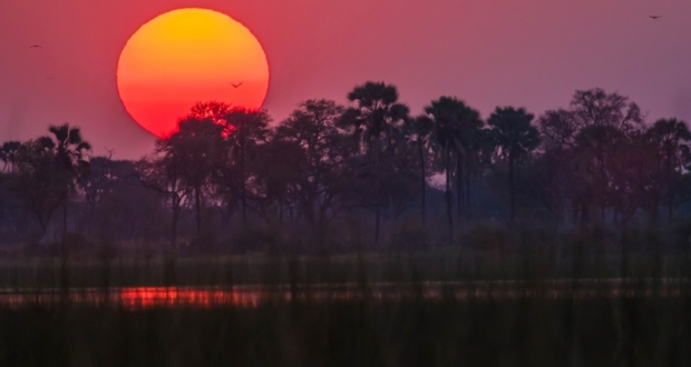 Botswana, Botswana Safari, Okavango Delta, Luxury Safari, Rra Dinare, Under One Botswana Sky
