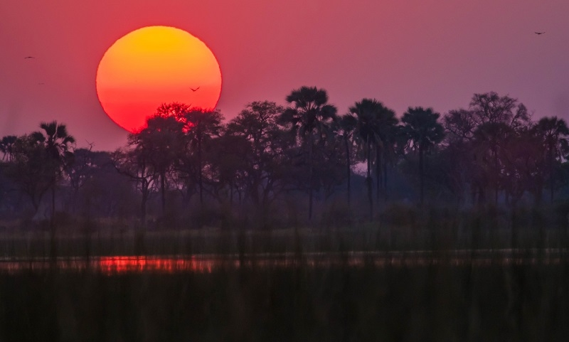 In the Press: Beguiling Botswana