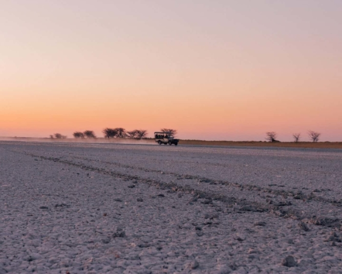 Under One Botswana Sky, In the Press, Nata Lodge, Makgadikgadi Salt Pans, Botswana Safari, Botswana Wildlife