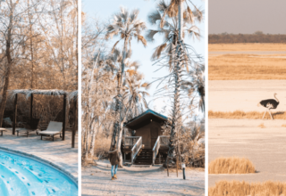 In the Press: Staying at Nata Lodge in Botswana