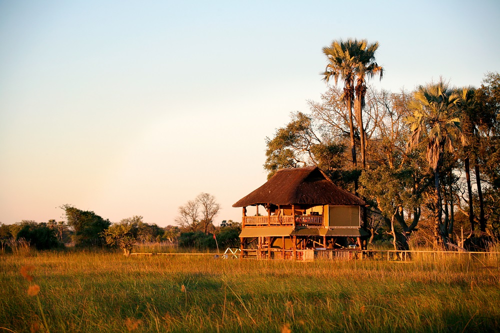 Under One Botswana Sky, Botswana, Botswana Safari, Travel Plans