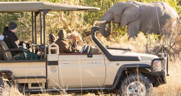Under One Botswana Sky, Botswana, Botswana Safari, Travel Plans