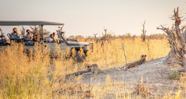 Under One Botswana Sky, Top Travel Destination, Wildlife Safari Experience, Botswana Safari, Botswana Safari Accommodation