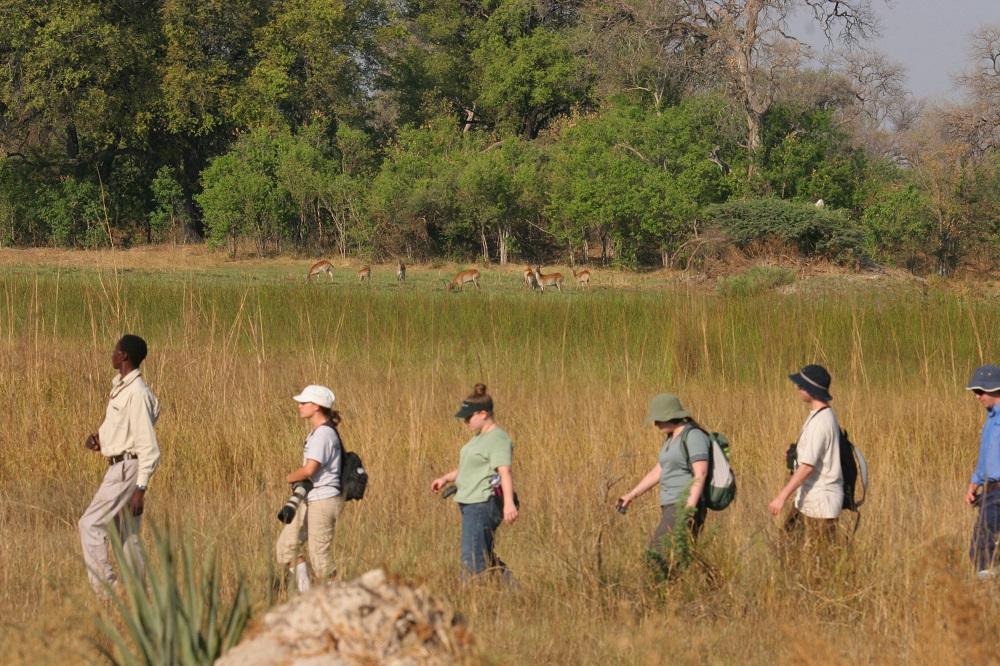 Under One Botswana Sky, Walking Safari, Okavango Delta Safari, Moremi Game Reserve, Chiefs Island, Moremi Crossing
